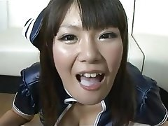 Swallow, Japanese