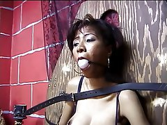BDSM, Asian, Lingerie